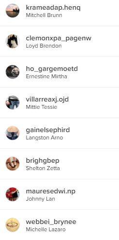 2_fake_instagram_follower_identifizierens